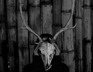 African-Skull-Feature-mikebellphotography